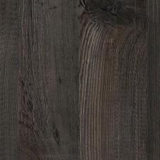 K4946 熔岩鐵杉